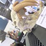 Makerbot Tiger Skull