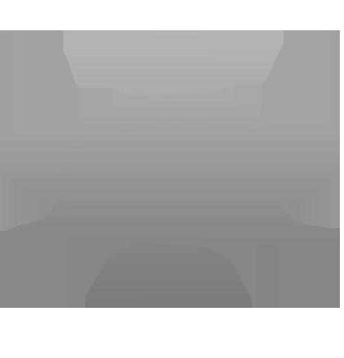 Logo AM4 grigio